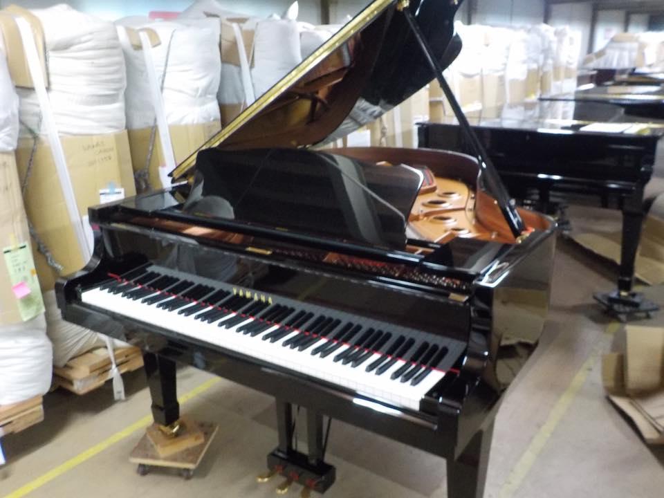 日本挑琴之旅 YAMAHA C3三角琴 年份新!狀態好  難得的好鋼琴